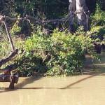 Ponte do Bem te vi. Local onde entra água na barragem.