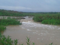 chegada-agua-barragem-condeuba-24-01-16 (2)