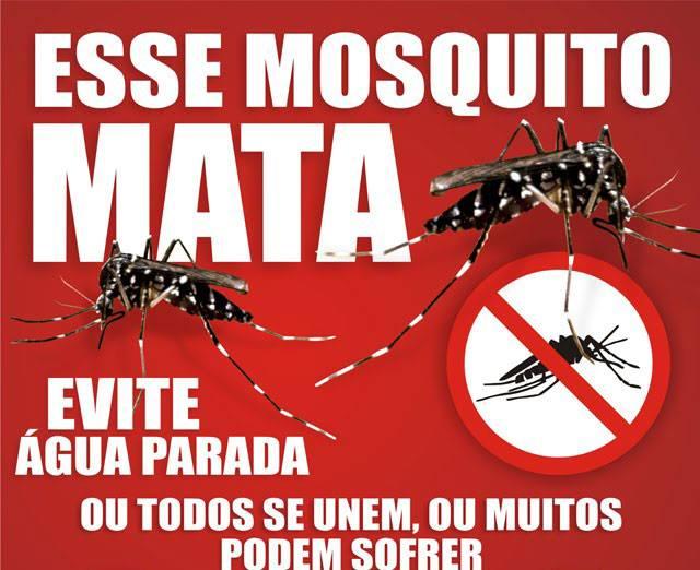 campanha contra mosquito