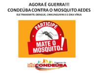 combate mosquito dengue condeuba