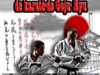 campeonato-intermunicipal-karate-condeuba